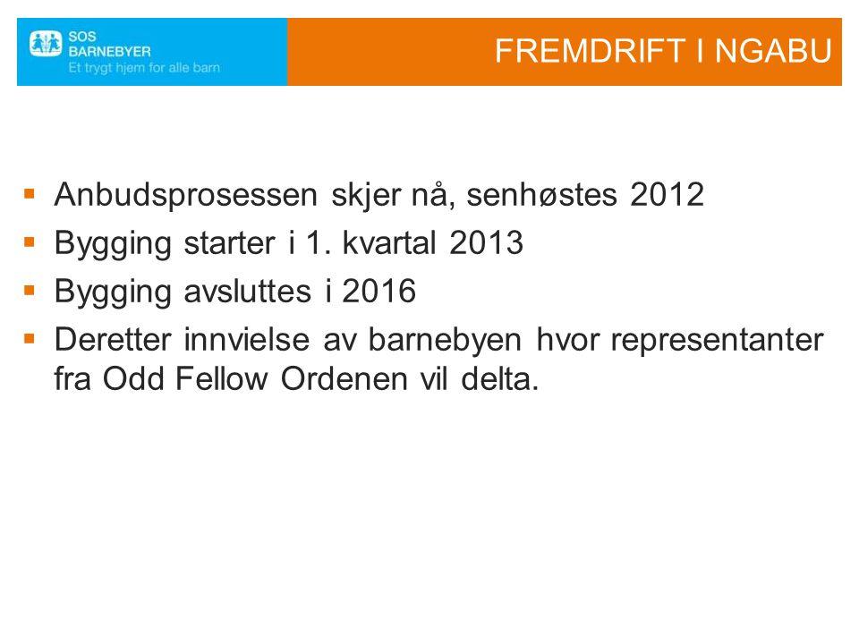 FREMDRIFT I NGABU  Anbudsprosessen skjer nå, senhøstes 2012  Bygging starter i 1. kvartal 2013  Bygging avsluttes i 2016  Deretter innvielse av ba