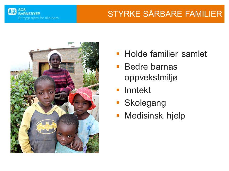 STYRKE SÅRBARE FAMILIER  Holde familier samlet  Bedre barnas oppvekstmiljø  Inntekt  Skolegang  Medisinsk hjelp