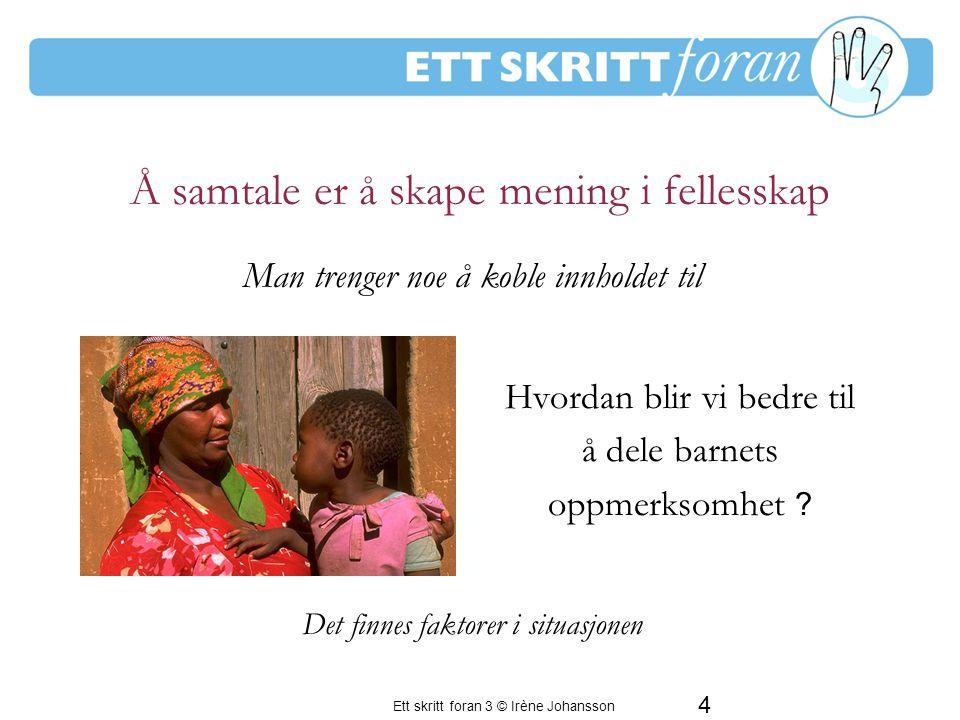 Ett skritt foran 3 © Irène Johansson 5 Hvordan blir vi bedre til å dele barnets erfaringsverden.