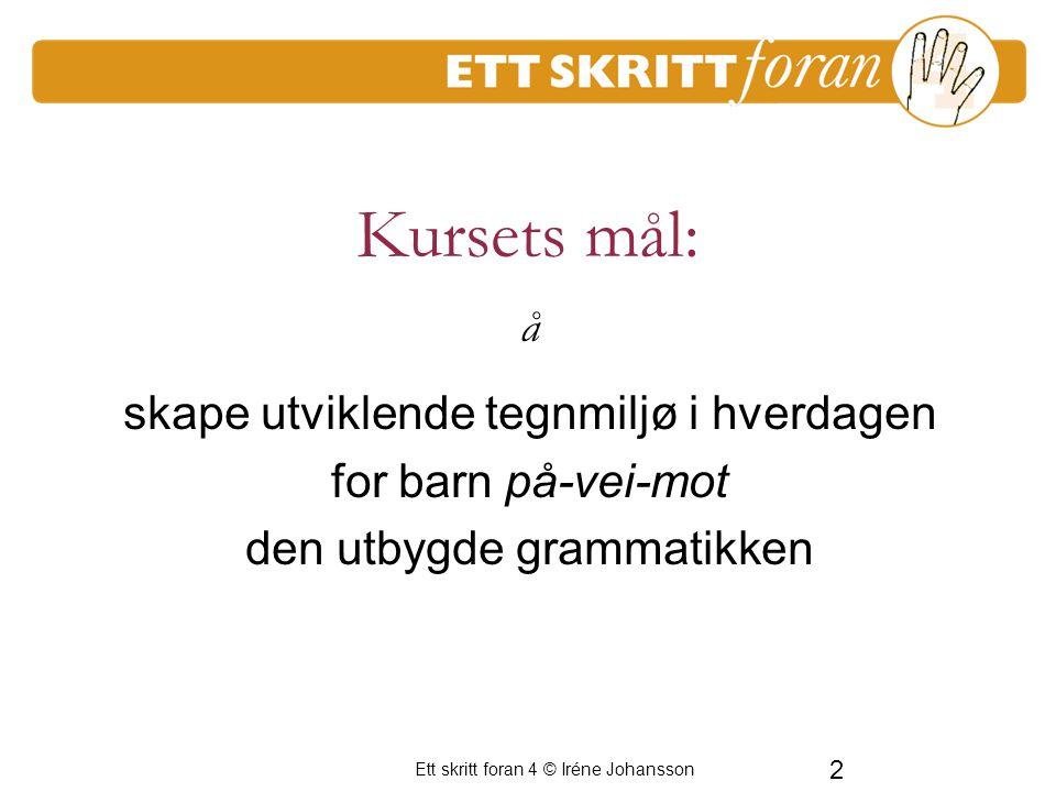 Ett skritt foran 4 © Iréne Johansson 2 Kursets mål: skape utviklende tegnmiljø i hverdagen for barn på-vei-mot den utbygde grammatikken å