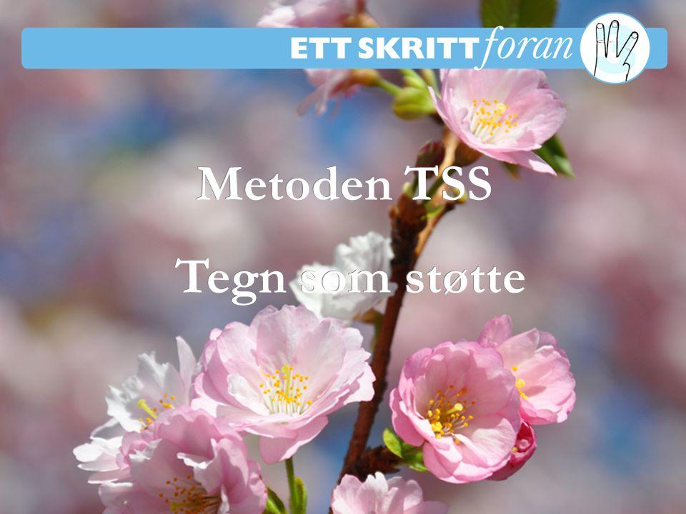 1 Ett skritt foran 3 © Irène Johansson Metoden TSS Tegn som støtte Metoden TSS Tegn som støtte Kursmøte 1-4