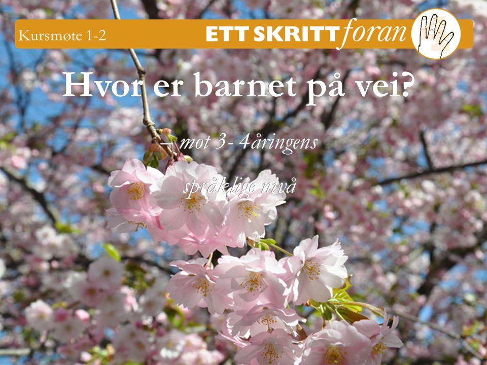 12 Ett skritt foran 4 © Iréne Johansson 3-4 åringer Først skal vi spise, så skal vi bade og så skal vi sove.