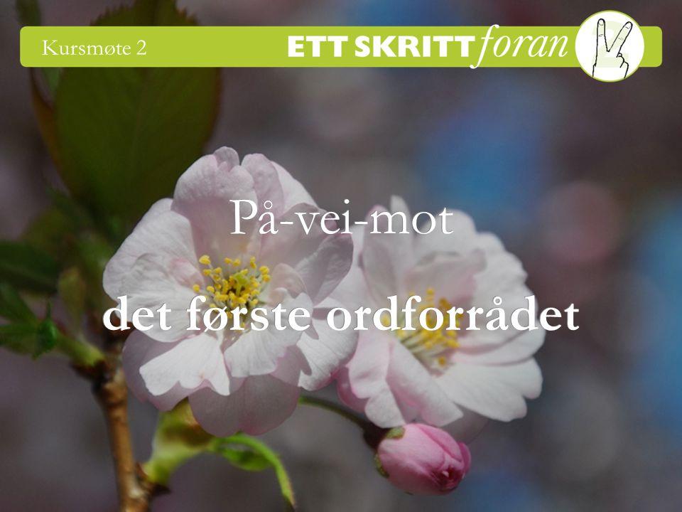 1 Ett skritt foran 2 © Irène Johansson På-vei-mot Kursmøte 2 det første ordforrådet