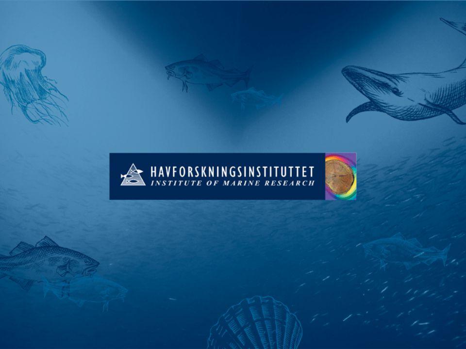 Forvaltning basert på ny kunnskap? Øivind Bergh Havforskningsinstituttet/UiB