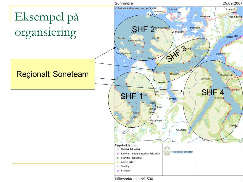 SHF 1 SHF 4 SHF 2 Regionalt Soneteam SHF 3 Eksempel på organsiering