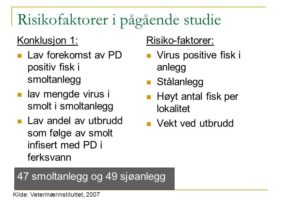 Risikofaktorer i pågående studie Konklusjon 1: Lav forekomst av PD positiv fisk i smoltanlegg lav mengde virus i smolt i smoltanlegg Lav andel av utbr