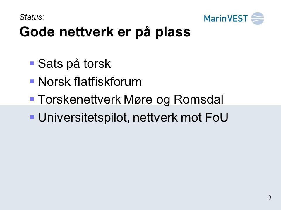 3 Status: Gode nettverk er på plass  Sats på torsk  Norsk flatfiskforum  Torskenettverk Møre og Romsdal  Universitetspilot, nettverk mot FoU