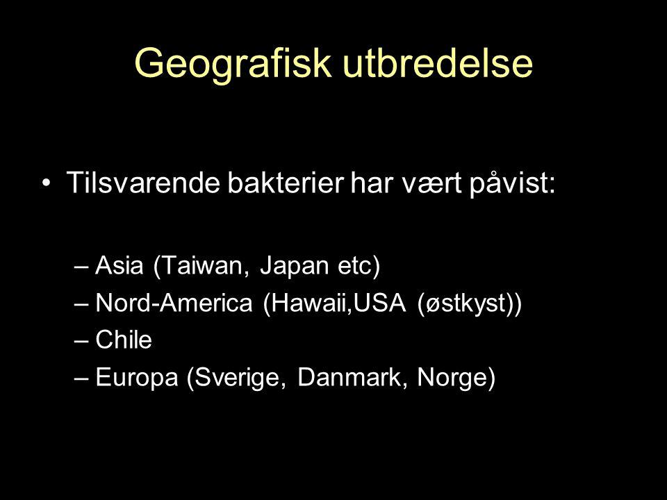 Geografisk utbredelse Tilsvarende bakterier har vært påvist: –Asia (Taiwan, Japan etc) –Nord-America (Hawaii,USA (østkyst)) –Chile –Europa (Sverige, Danmark, Norge)