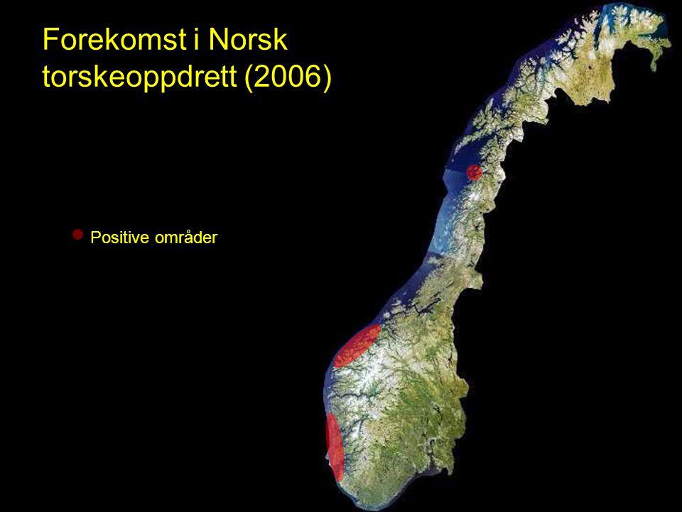 Forekomst i Norsk torskeoppdrett (2006) Positive områder