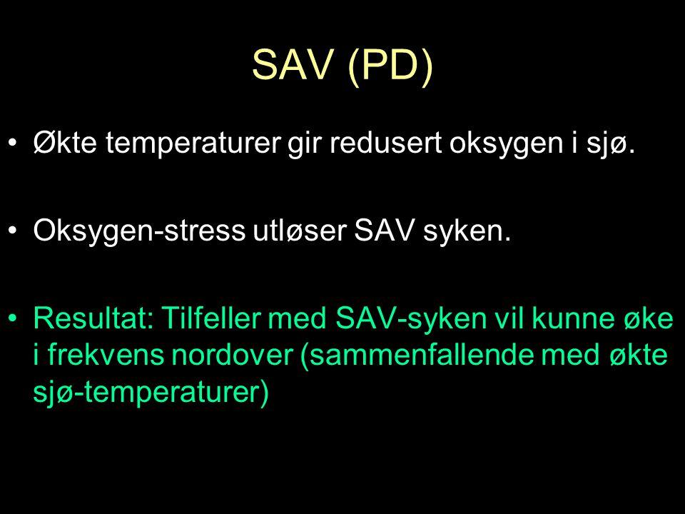 Temperaturen i Nordsjøen har vært logget siden 1873.