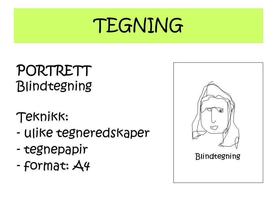 TEGNING PORTRETT Blindtegning Teknikk: - ulike tegneredskaper - tegnepapir - format: A4