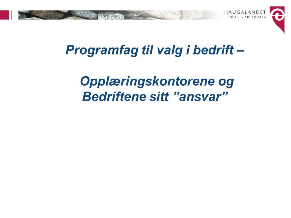 """Programfag til valg i bedrift – Opplæringskontorene og Bedriftene sitt """"ansvar"""""""