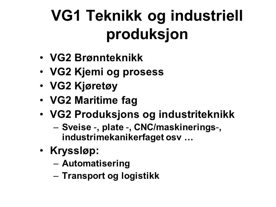 VG1 Teknikk og industriell produksjon VG2 Brønnteknikk VG2 Kjemi og prosess VG2 Kjøretøy VG2 Maritime fag VG2 Produksjons og industriteknikk –Sveise -, plate -, CNC/maskinerings-, industrimekanikerfaget osv … Kryssløp: –Automatisering –Transport og logistikk