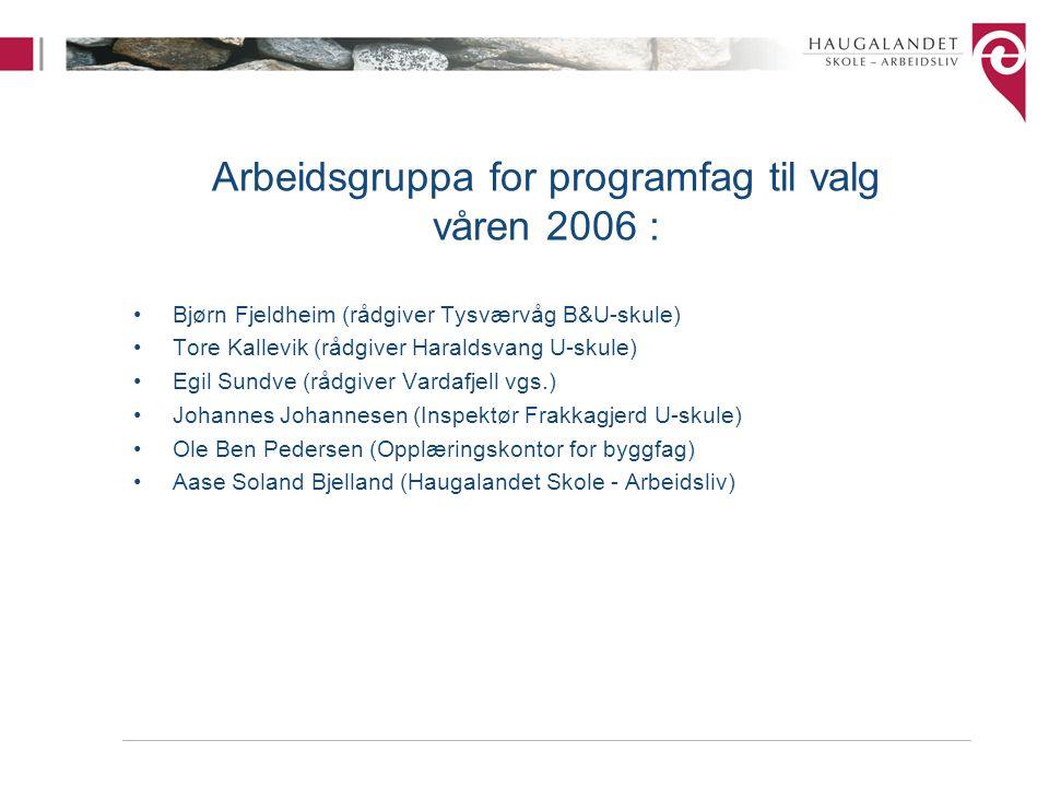 Arbeidsgruppa for programfag til valg våren 2006 : Bjørn Fjeldheim (rådgiver Tysværvåg B&U-skule) Tore Kallevik (rådgiver Haraldsvang U-skule) Egil Su