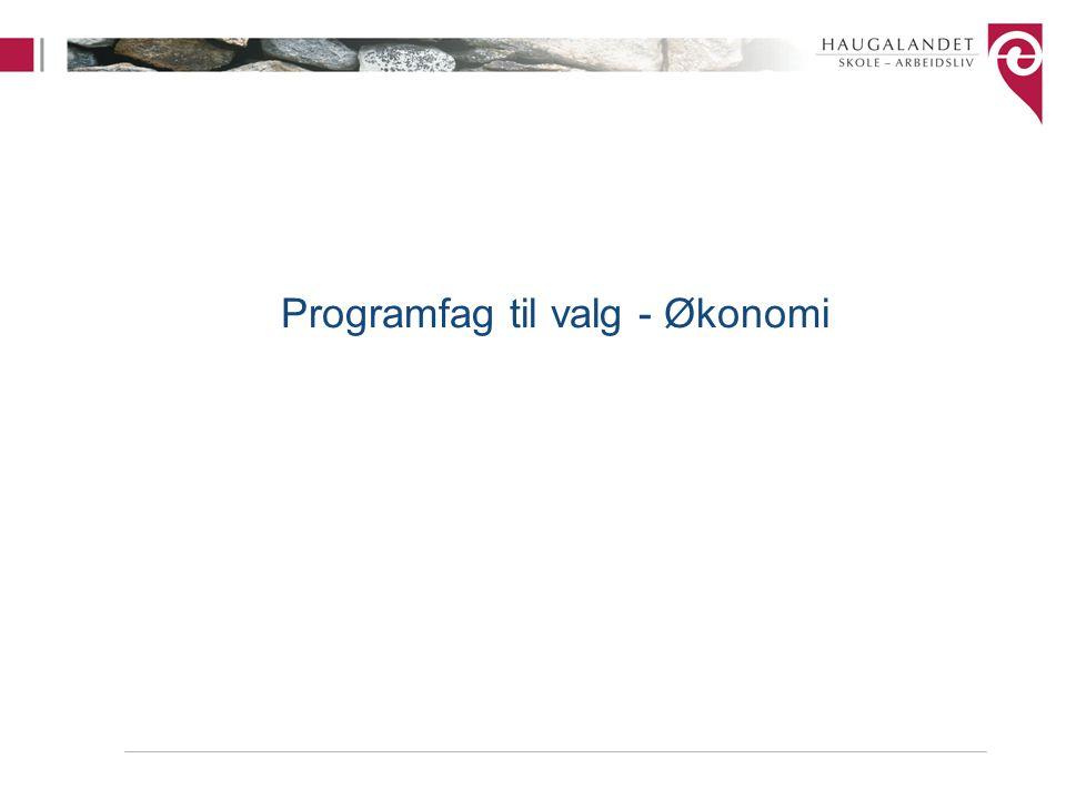 Programfag til valg - Økonomi