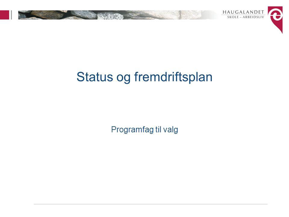Status og fremdriftsplan Programfag til valg