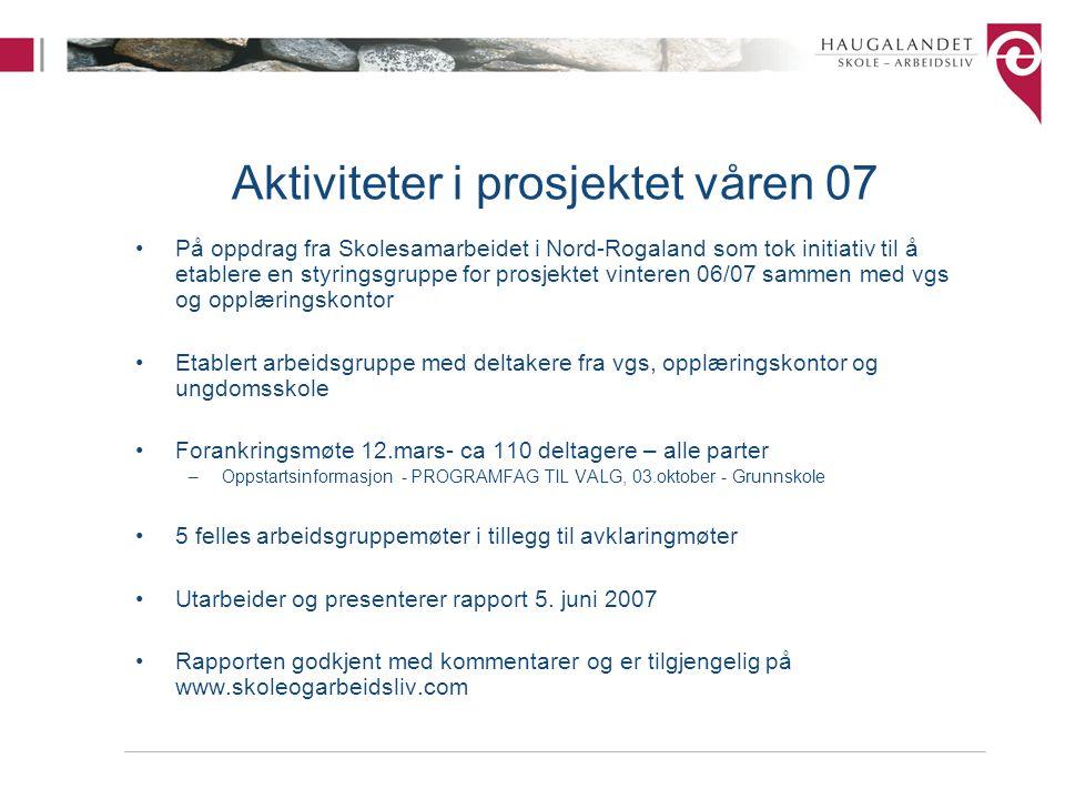 Aktiviteter i prosjektet våren 07 På oppdrag fra Skolesamarbeidet i Nord-Rogaland som tok initiativ til å etablere en styringsgruppe for prosjektet vi