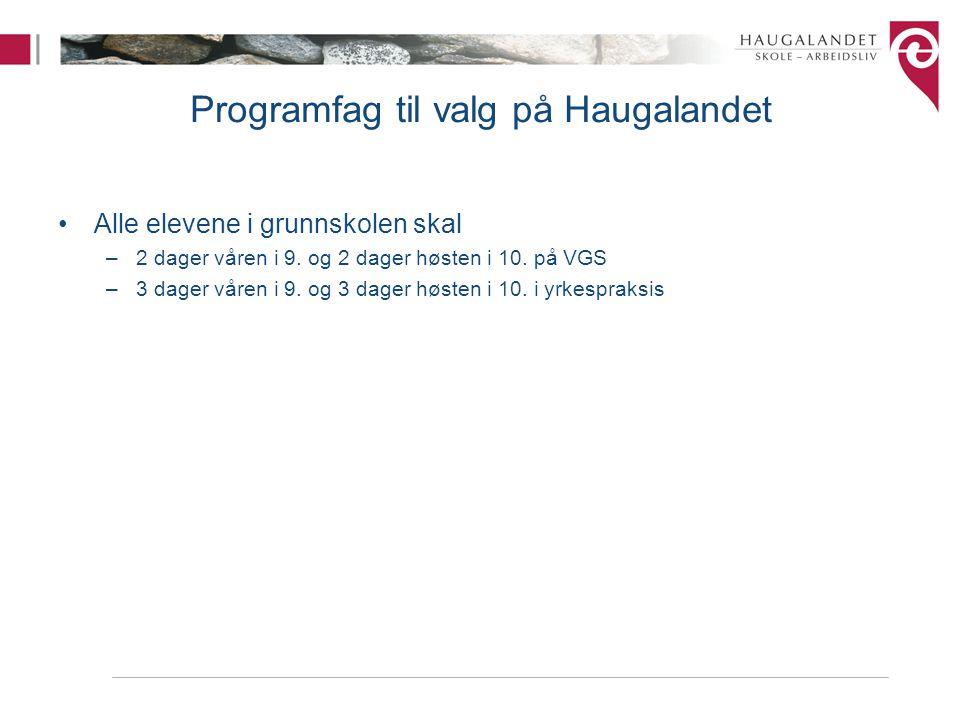 Programfag til valg på Haugalandet Alle elevene i grunnskolen skal –2 dager våren i 9. og 2 dager høsten i 10. på VGS –3 dager våren i 9. og 3 dager h