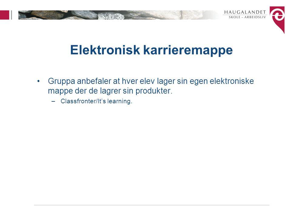 Elektronisk karrieremappe Gruppa anbefaler at hver elev lager sin egen elektroniske mappe der de lagrer sin produkter.