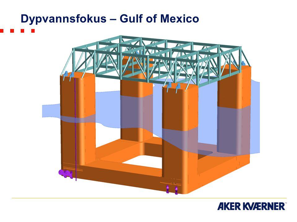 Dypvannsfokus – Gulf of Mexico