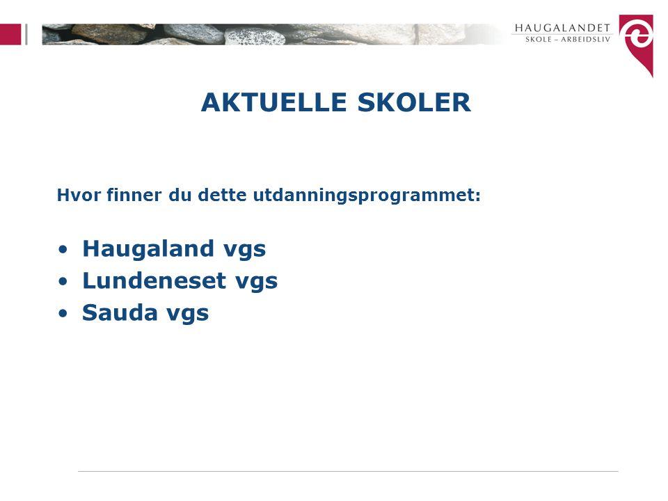 AKTUELLE SKOLER Hvor finner du dette utdanningsprogrammet: Haugaland vgs Lundeneset vgs Sauda vgs