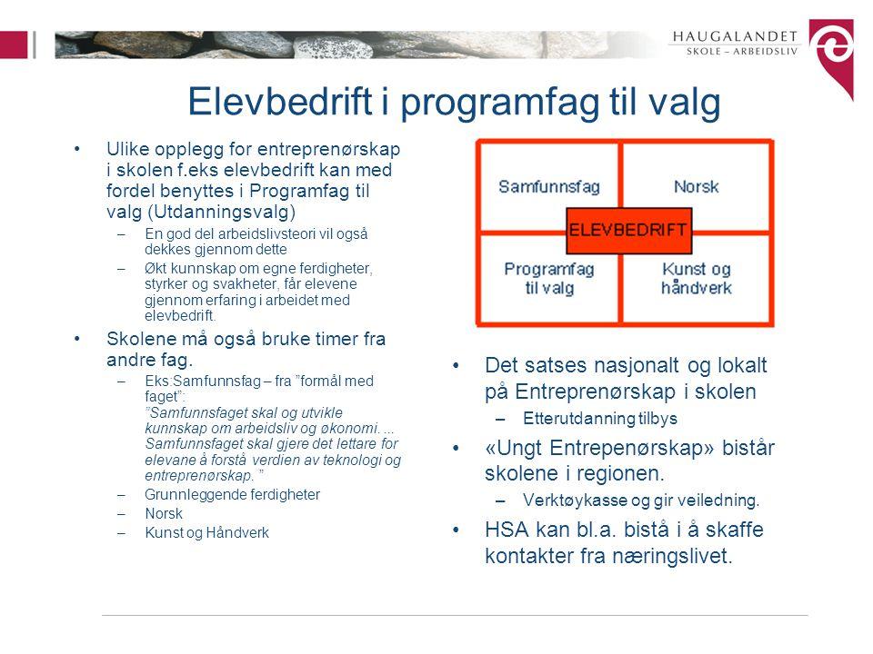 Elevbedrift i programfag til valg Ulike opplegg for entreprenørskap i skolen f.eks elevbedrift kan med fordel benyttes i Programfag til valg (Utdannin