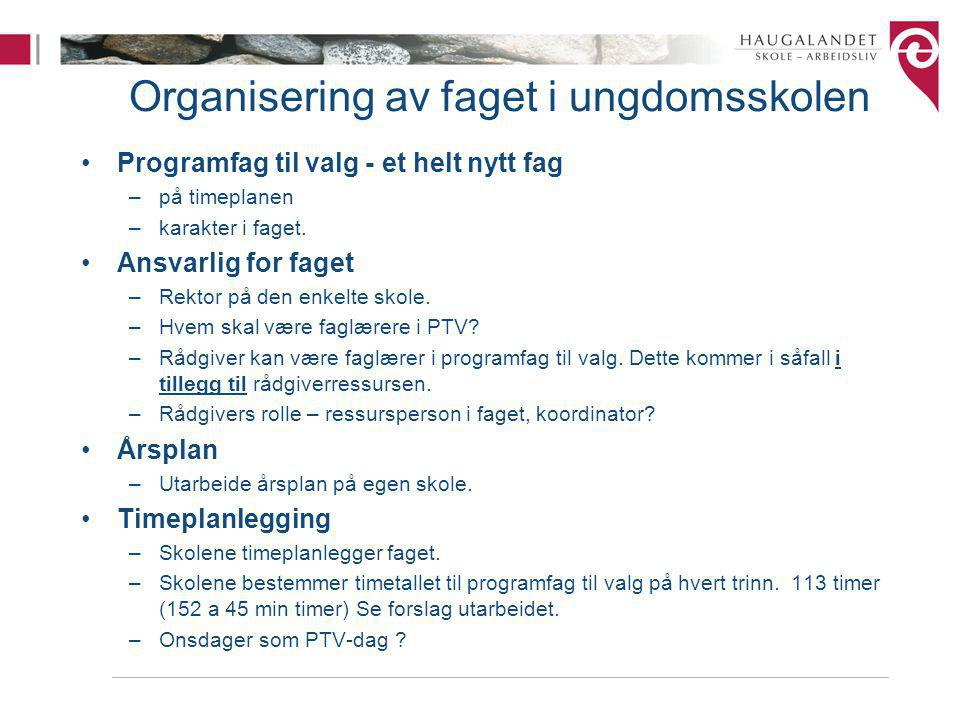 Organisering av faget i ungdomsskolen Programfag til valg - et helt nytt fag –på timeplanen –karakter i faget.