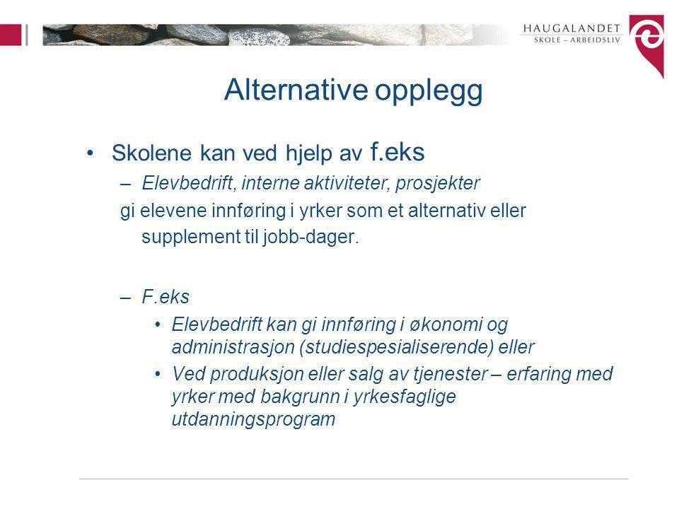 Alternative opplegg Skolene kan ved hjelp av f.eks –Elevbedrift, interne aktiviteter, prosjekter gi elevene innføring i yrker som et alternativ eller supplement til jobb-dager.