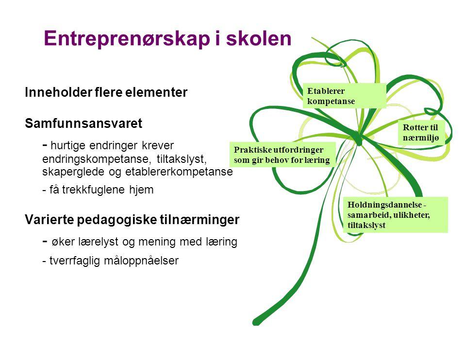 Entreprenørskap i skolen Inneholder flere elementer Samfunnsansvaret - hurtige endringer krever endringskompetanse, tiltakslyst, skaperglede og etablererkompetanse - få trekkfuglene hjem Varierte pedagogiske tilnærminger - øker lærelyst og mening med læring - tverrfaglig måloppnåelser Etablerer kompetanse Praktiske utfordringer som gir behov for læring Holdningsdannelse - samarbeid, ulikheter, tiltakslyst Røtter til nærmiljø