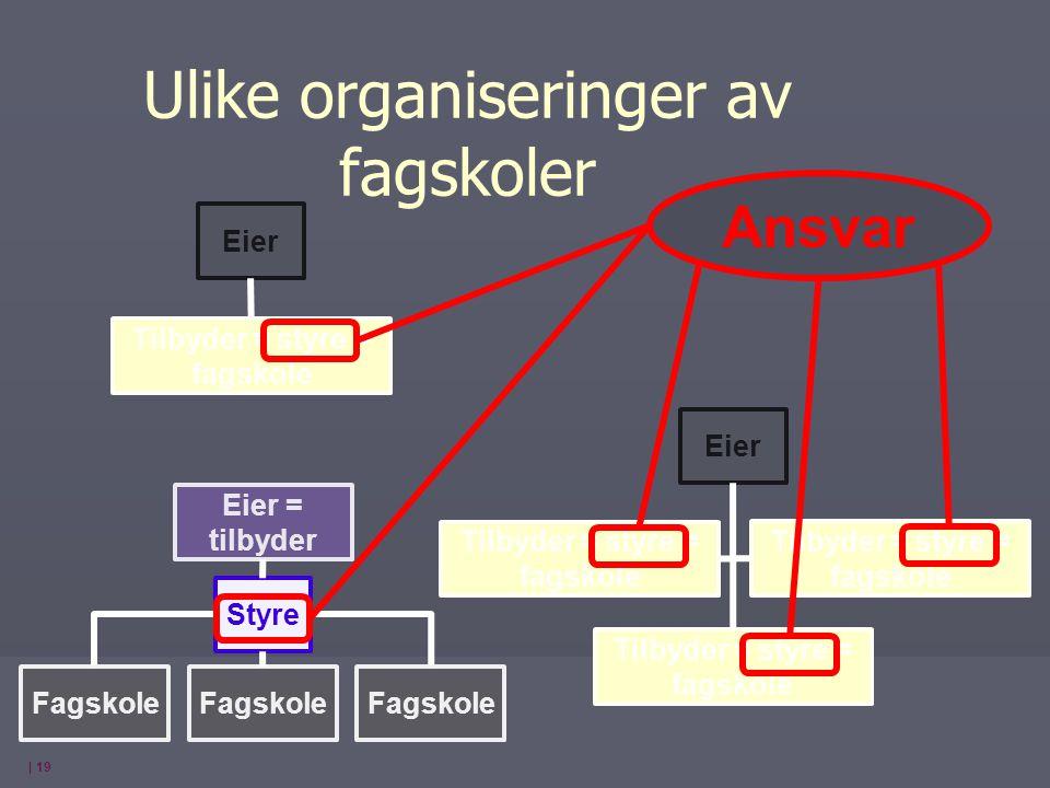 | 19 Eier = tilbyder Fagskole Styre Tilbyder = styre = fagskole Eier Tilbyder = styre = fagskole Ulike organiseringer av fagskoler Ansvar