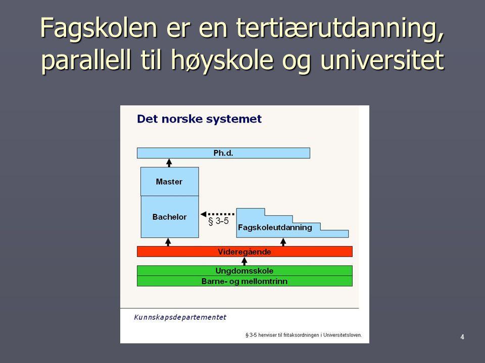 Fagskolen er en tertiærutdanning, parallell til høyskole og universitet 4