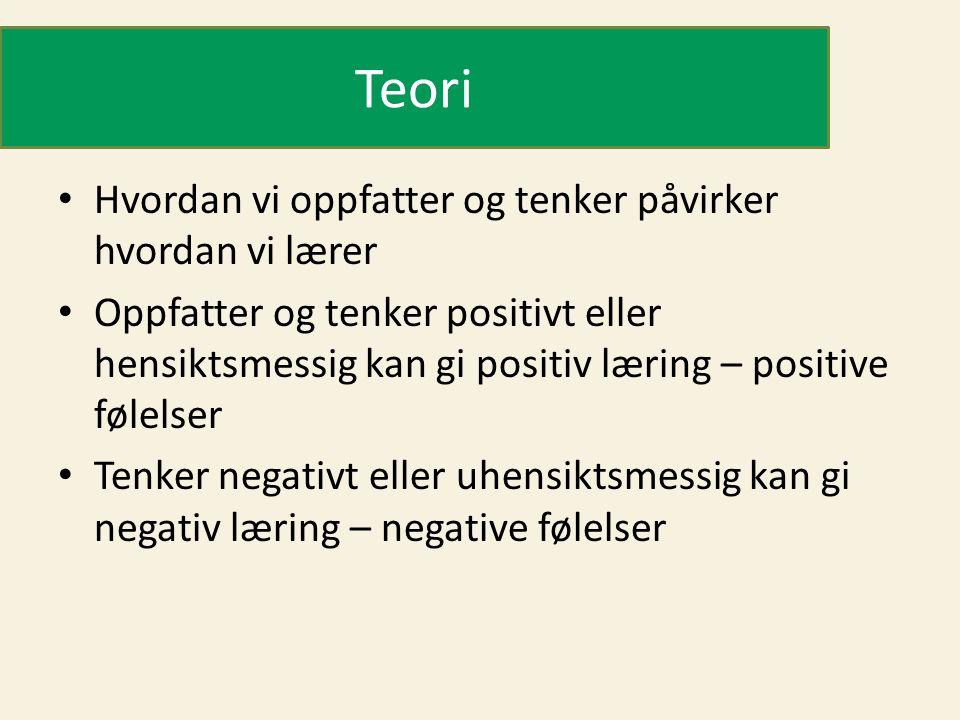 Teori Hvordan vi oppfatter og tenker påvirker hvordan vi lærer Oppfatter og tenker positivt eller hensiktsmessig kan gi positiv læring – positive føle