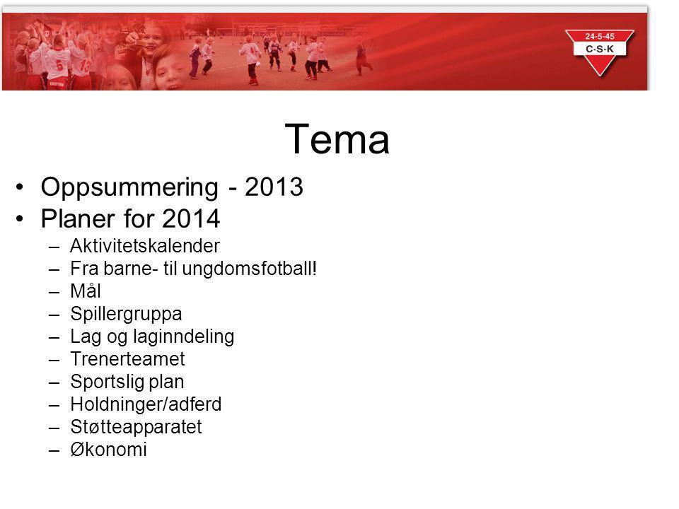 Tema Oppsummering - 2013 Planer for 2014 –Aktivitetskalender –Fra barne- til ungdomsfotball! –Mål –Spillergruppa –Lag og laginndeling –Trenerteamet –S