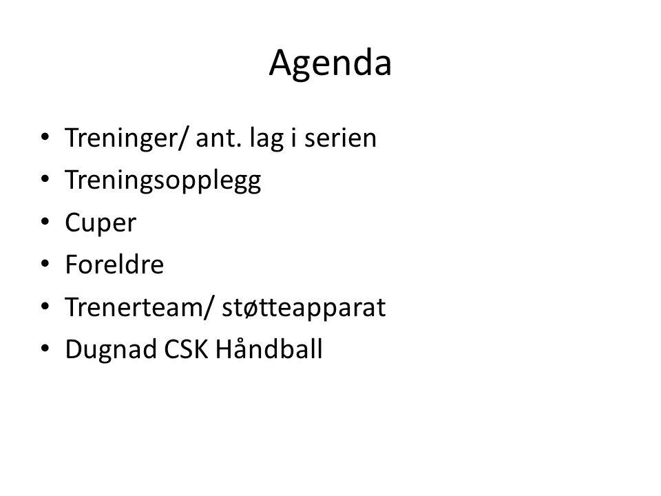 Agenda Treninger/ ant. lag i serien Treningsopplegg Cuper Foreldre Trenerteam/ støtteapparat Dugnad CSK Håndball