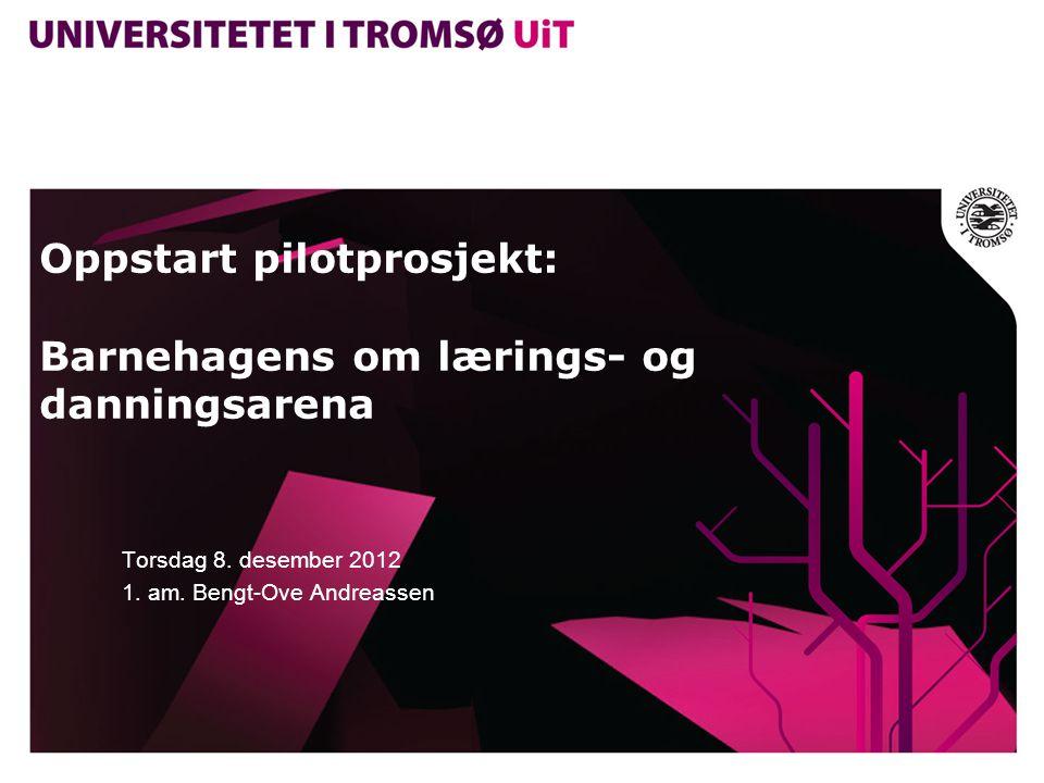 Oppstart pilotprosjekt: Barnehagens om lærings- og danningsarena Torsdag 8.