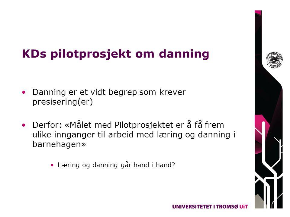 KDs pilotprosjekt om danning Danning er et vidt begrep som krever presisering(er) Derfor: «Målet med Pilotprosjektet er å få frem ulike innganger til