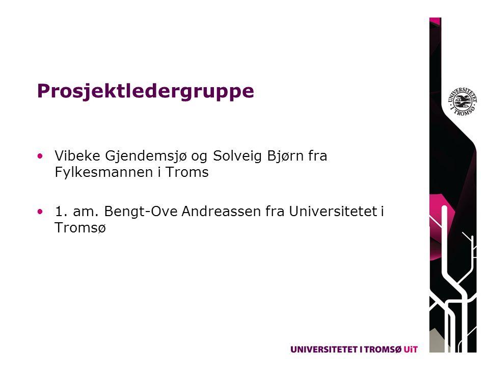 Prosjektledergruppe Vibeke Gjendemsjø og Solveig Bjørn fra Fylkesmannen i Troms 1. am. Bengt-Ove Andreassen fra Universitetet i Tromsø