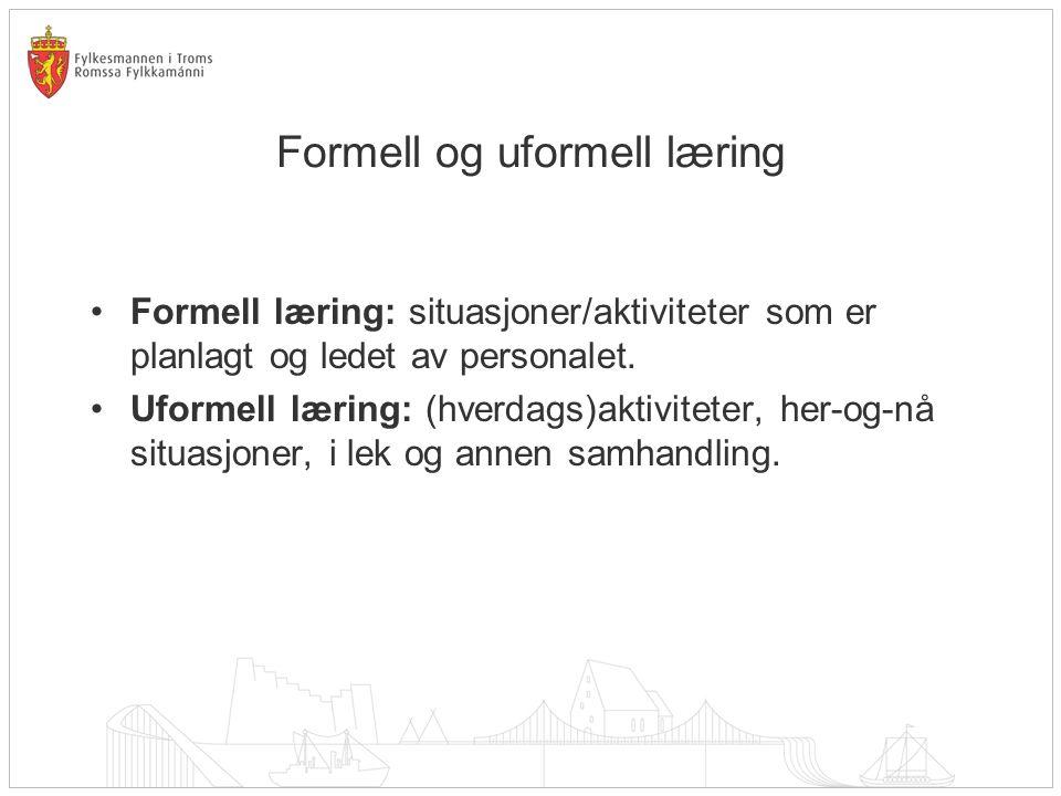 Formell og uformell læring Formell læring: situasjoner/aktiviteter som er planlagt og ledet av personalet. Uformell læring: (hverdags)aktiviteter, her