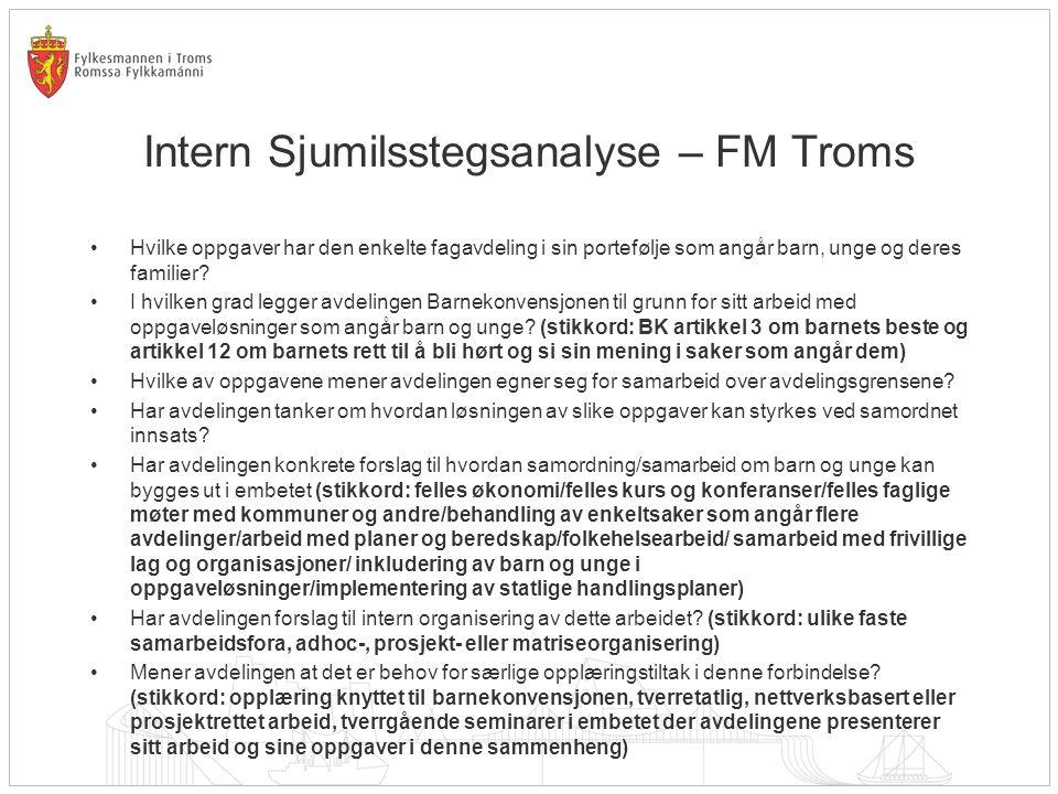 Intern Sjumilsstegsanalyse – FM Troms Hvilke oppgaver har den enkelte fagavdeling i sin portefølje som angår barn, unge og deres familier.