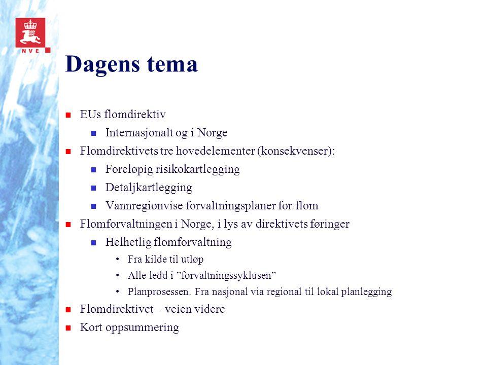 Dagens tema n EUs flomdirektiv n Internasjonalt og i Norge n Flomdirektivets tre hovedelementer (konsekvenser): n Foreløpig risikokartlegging n Detalj