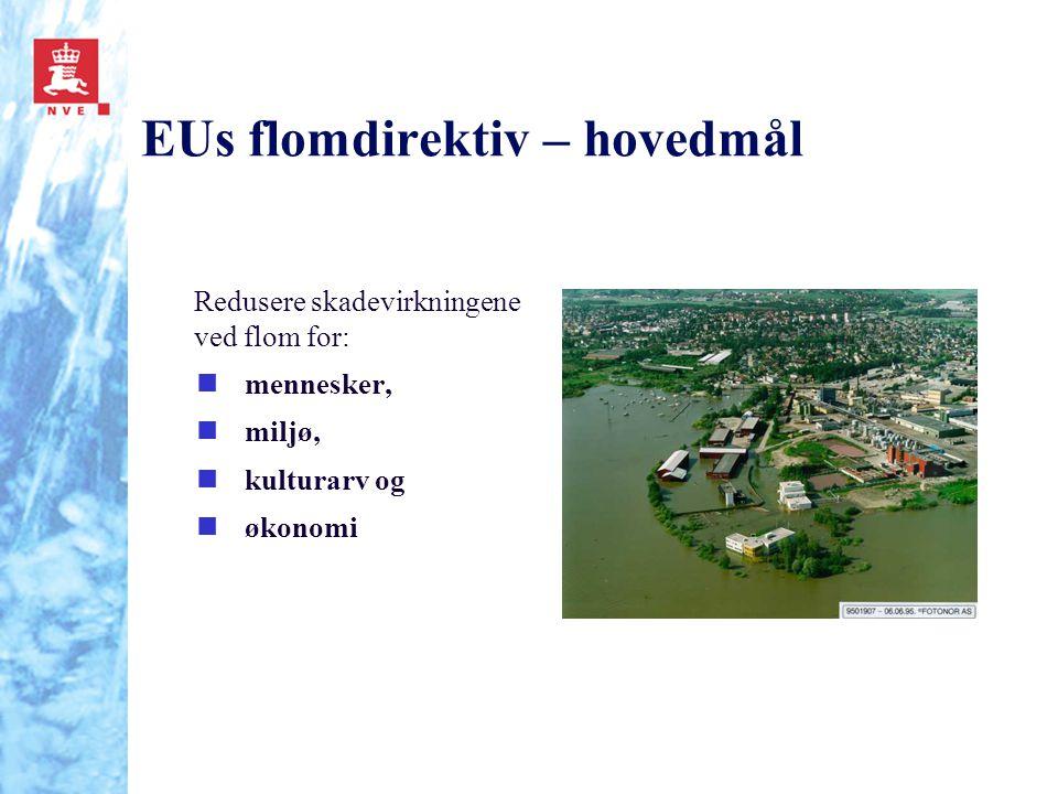 EUs flomdirektiv – hovedmål Redusere skadevirkningene ved flom for: nmennesker, nmiljø, nkulturarv og nøkonomi