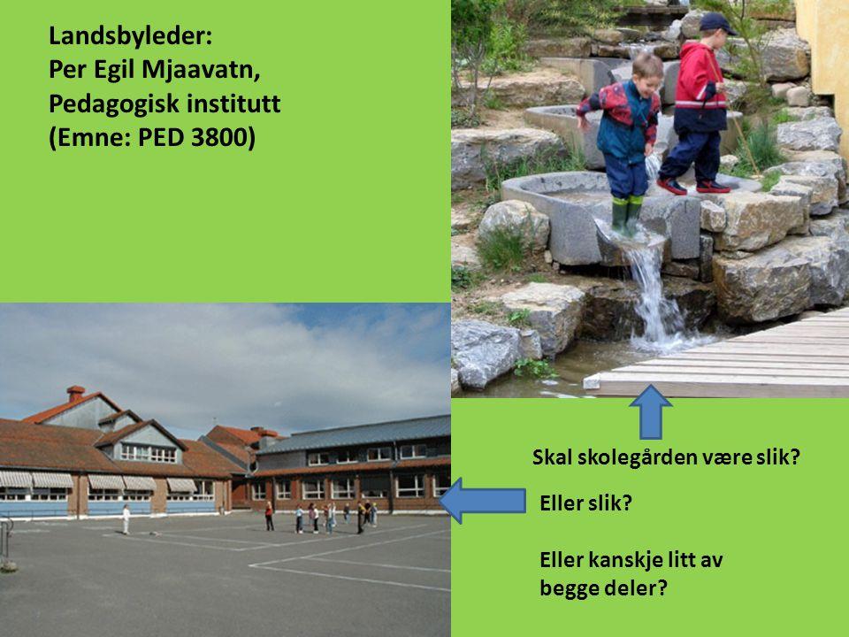 Landsbyleder: Per Egil Mjaavatn, Pedagogisk institutt (Emne: PED 3800) Skal skolegården være slik.