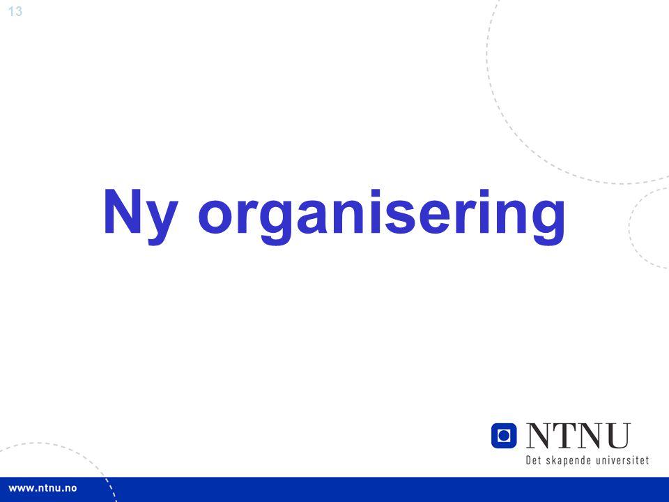 13 Ny organisering
