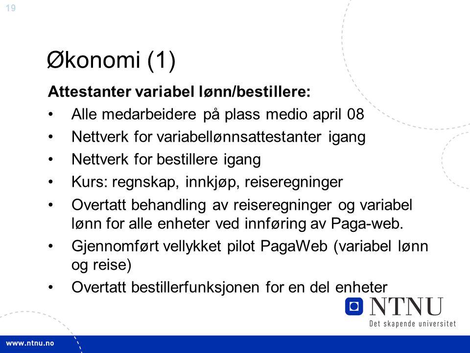 19 Økonomi (1) Attestanter variabel lønn/bestillere: Alle medarbeidere på plass medio april 08 Nettverk for variabellønnsattestanter igang Nettverk fo