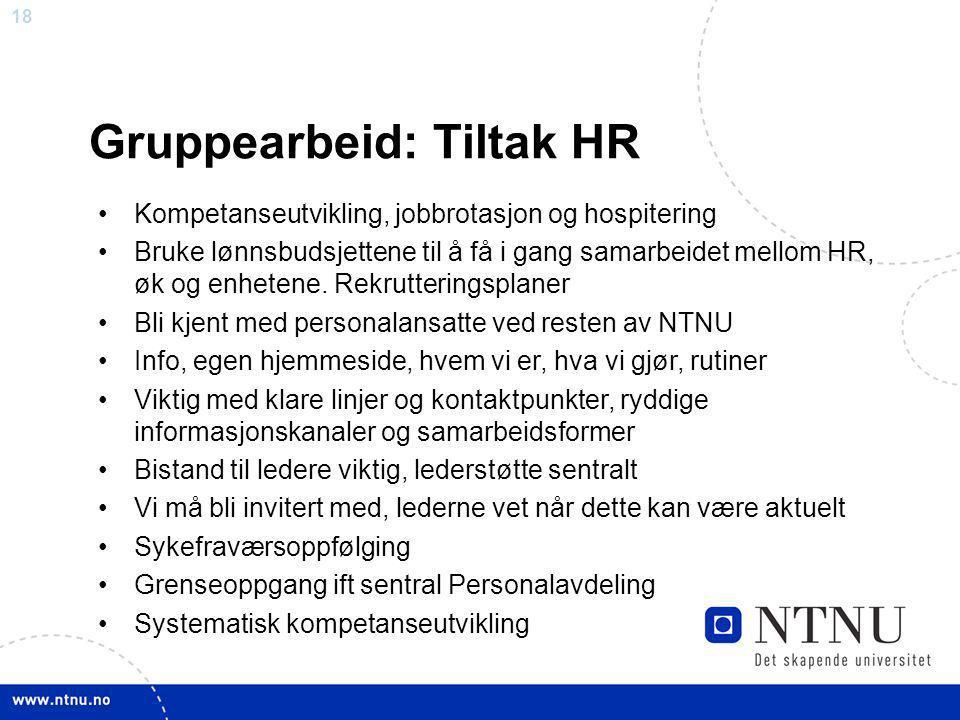 18 Gruppearbeid: Tiltak HR Kompetanseutvikling, jobbrotasjon og hospitering Bruke lønnsbudsjettene til å få i gang samarbeidet mellom HR, øk og enhete
