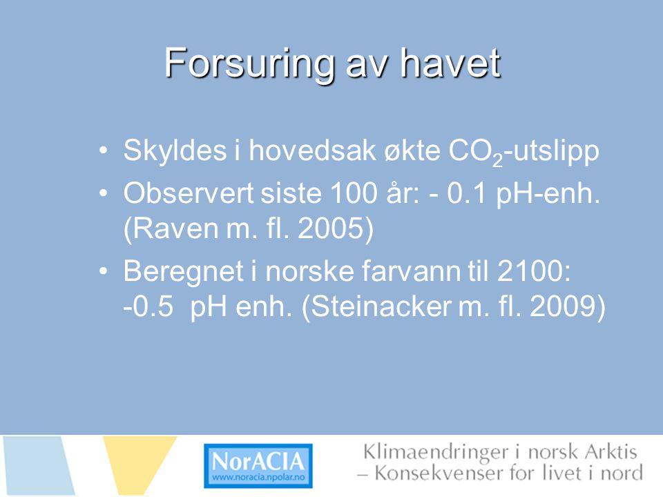 limaendringer i norsk Arktis – Knsekvenser for livet i nord Forsuring av havet Skyldes i hovedsak økte CO 2 -utslipp Observert siste 100 år: - 0.1 pH-enh.