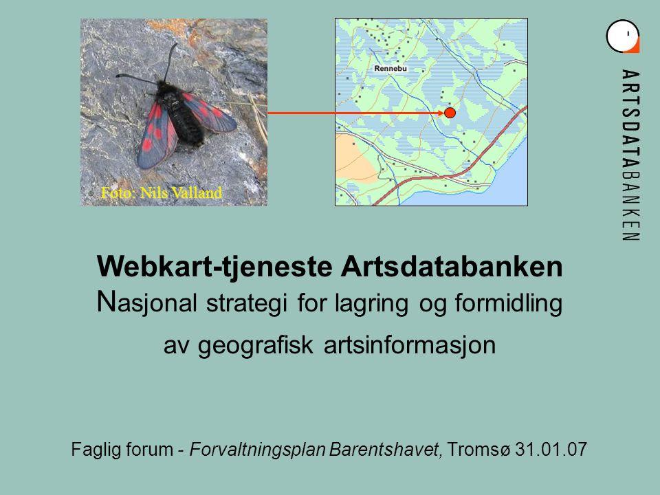Webkart-tjeneste Artsdatabanken N asjonal strategi for lagring og formidling av geografisk artsinformasjon Faglig forum - Forvaltningsplan Barentshavet, Tromsø 31.01.07 Foto: Nils Valland