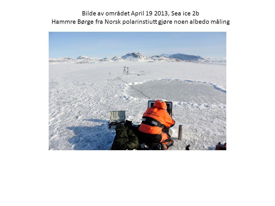 Bilde av området April 19 2013, Sea ice 2b Hammre Børge fra Norsk polarinstiutt gjøre noen albedo måling