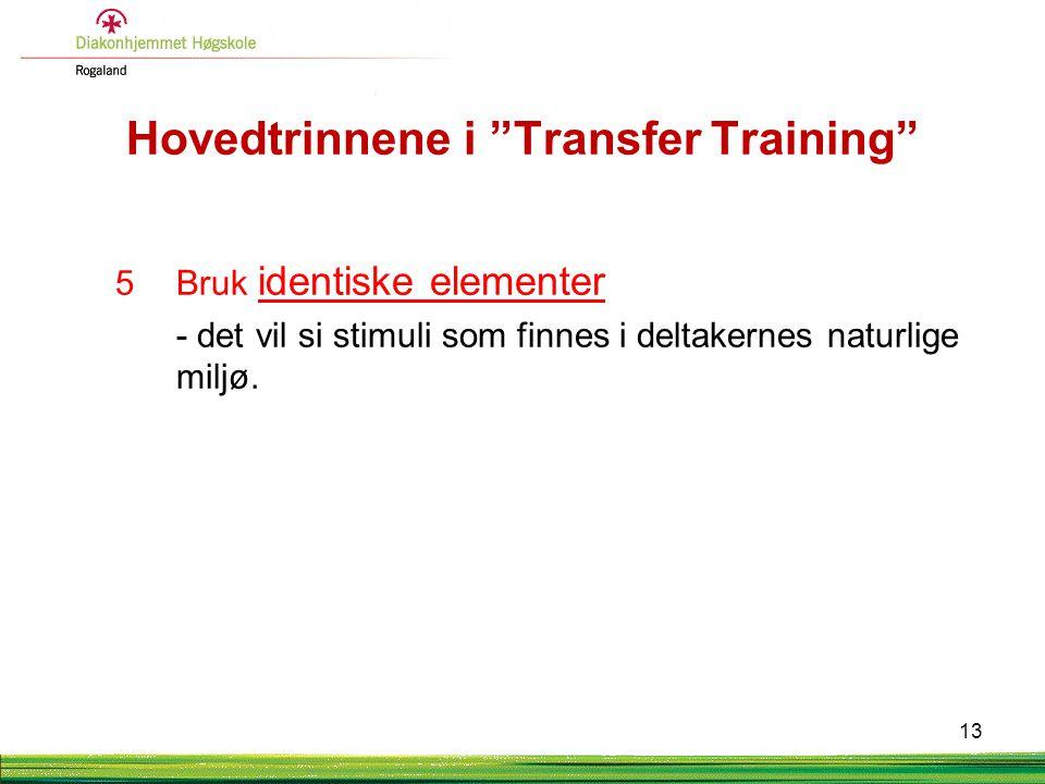 """Hovedtrinnene i """"Transfer Training"""" 5Bruk identiske elementer - det vil si stimuli som finnes i deltakernes naturlige miljø. 13"""