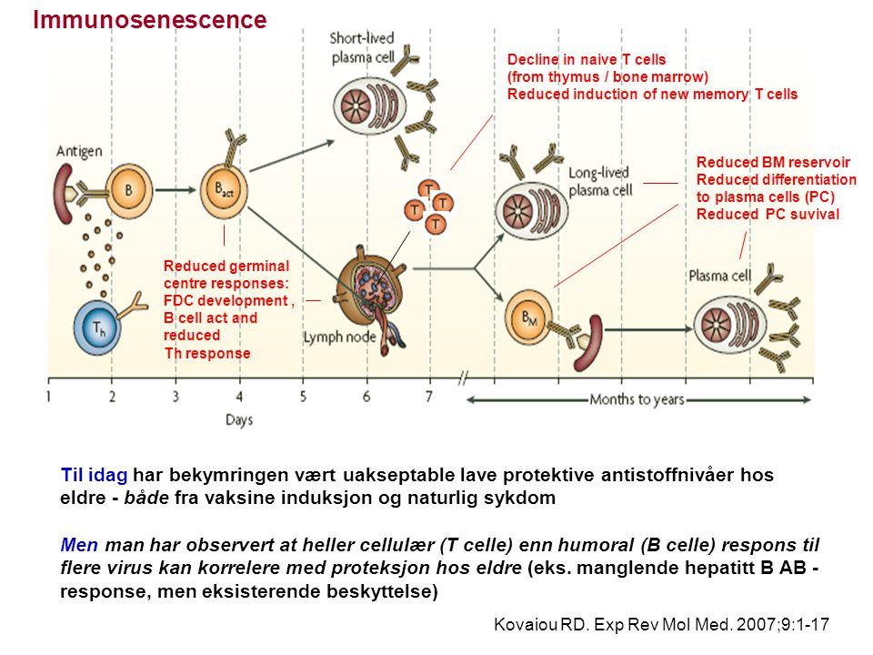 Derfor er først og fremst reduksjonen i den naïve T cell poolen og involusjon av germinalsentra kritisk for immunsystemet heller enn AS-nivåene, Også, makrofagers og dendritiske cellers antigenpresentationen kan hemmes av aldering Denne defekten i immunologisk hukommelse kan være spesielt alvorlig  ved smitte av emerging diseases (case-fatality > 50% for SARS, observert i personer over 50 år)  ved vaksinasjon av eldre med nye antigen (typhoid, yellow fever, hepatitis A and rabies virus - when travelling to the tropics) ?